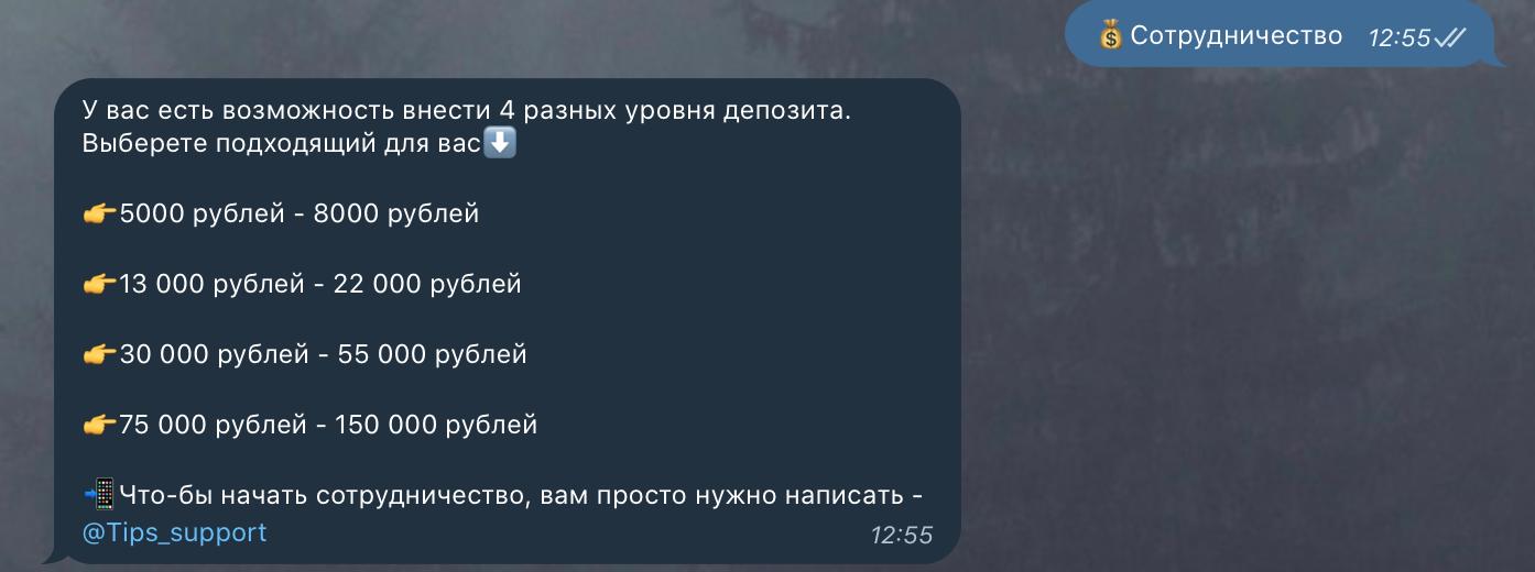 Варианты сотрудничества с ботом Skynet в телеграмм